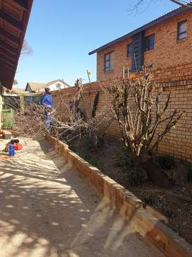 FULLY INSURED TREE FELLING SERVICES