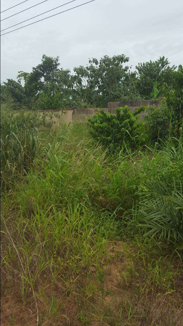 A land for sale at Daban new site 0