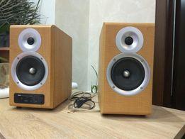 Мультимедийная акустическая система NF-11