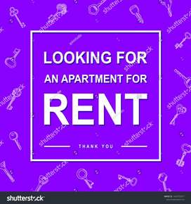 I'm looking for 1 bed apartment not exceeding R4000 in/around Ferndale