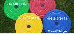 Диск Здоровья Грация металл -Тренажер для фитнеса похудения Украина