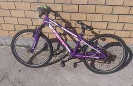 Avalanche cosmic 24 mountain bike for sale