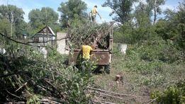 Спилим деревья Уборка участка земляные работы демонтаж перестенок