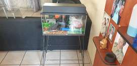 2 fish tanks +all in for sale