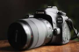 Canon 80D + Canon EFS 18-135mm 3.5-5.6 IS USM