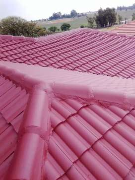 Roof painting and Sealing  specialists.