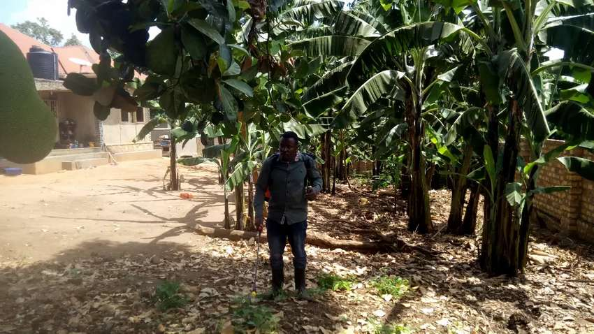An acre of land for sale near Mubende RR Hospital 0