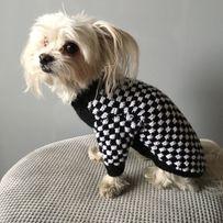 Sweter dla Maltańczyka Sweter dla Chihuahua Sweter dla psa