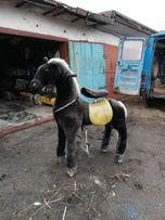 Ходящая лошадка