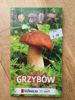 Atlas grzybów tom 1