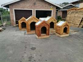 Dog kennels and doggie dinner tables, biggest supplier in pmb
