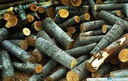 Продам дрова,вся Украина