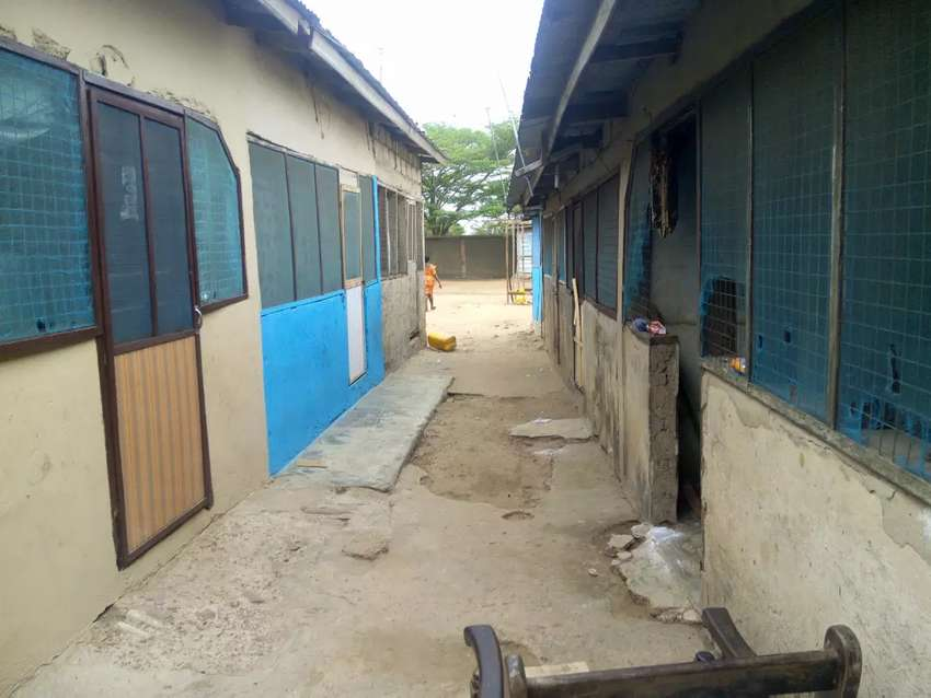 6 No's Chamber & Hall one 1 plot for sale at Ashaiman 0