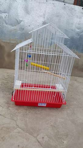 Big cages for small parots and cockatiel birds
