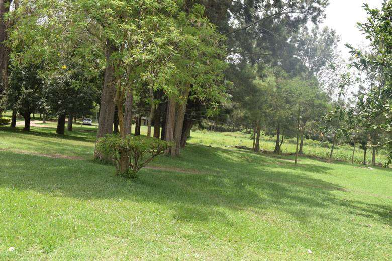 LAND FOR SALE IN MBARARA TOWN 0