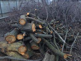 Спил, обрезка деревьев! Дача, участок, возле дома, крыши.распил Дров