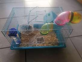 Cage and dwarf hamster
