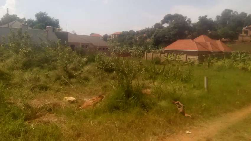 land for sale in kisaasi Decimals 25 0