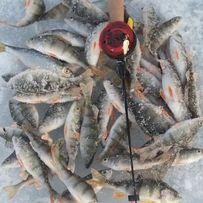 Продам блесна для зимней рыбалки