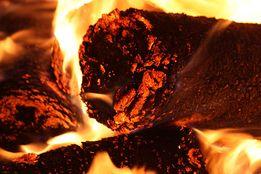 Топливные брикеты из лигнина 2 800,00 грн./т