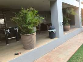 Cottage Rooms available for rental in Auckland Park