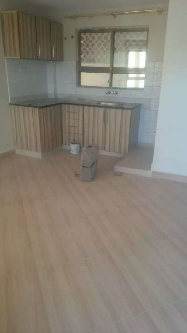 Spacious modern and new one bedroom apartment for rent in south b 0