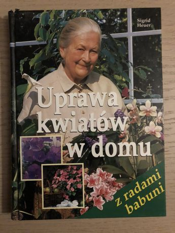 Uprawa kwiatów w domu Czchów - image 1