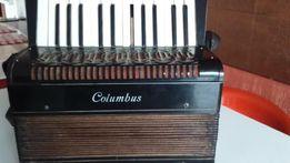 Stara harmonia//akordeon