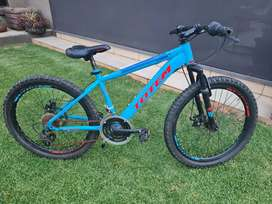 Totem 24 inch bicycle