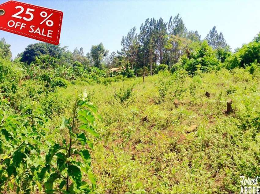 Plot of land for sale 0