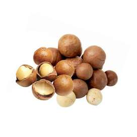Macadamia Nut in Shell