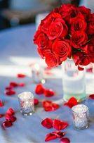 Відеозйомка весілля, лавсторі, день народження, ювілей, хрестини