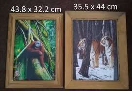 2x Wildlife Wall pictures Wooden Frames