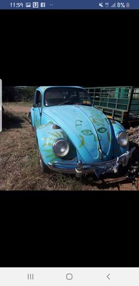 Looking for! I am looking for a older Beetle to rebuild as a dad & son