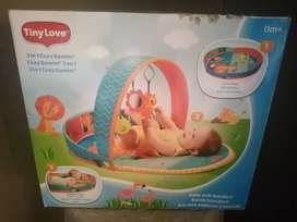 Baby Jungle Gym For Sale (1yr old)