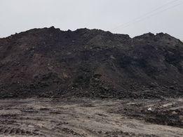 Чернозем, грунт, грунтовая смесь продам в Киев и Киевскую обл.