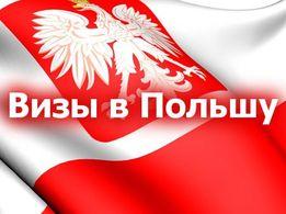 Рабочая (национальная) виза в Польшу под ключ всего за 1800 грн.