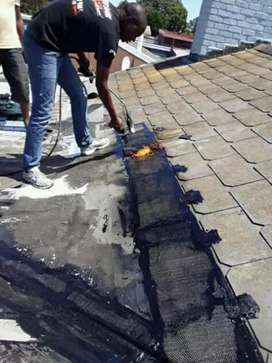 Waterproofing and painting service