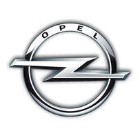 Opel Carpass Pin Security Code электроника