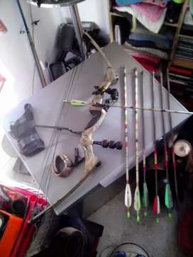 Compound hunting bow