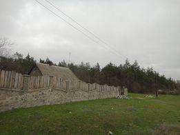 Продам участок с домом в Дибровском лесу.