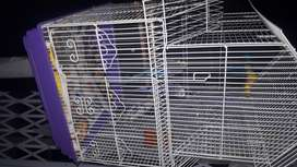 2 x Budgies with cage and stand