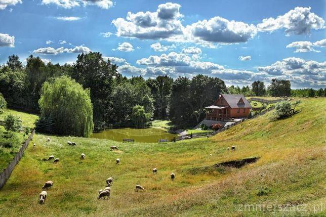 Agroturystyka Mirella Wielka Wieś - image 1