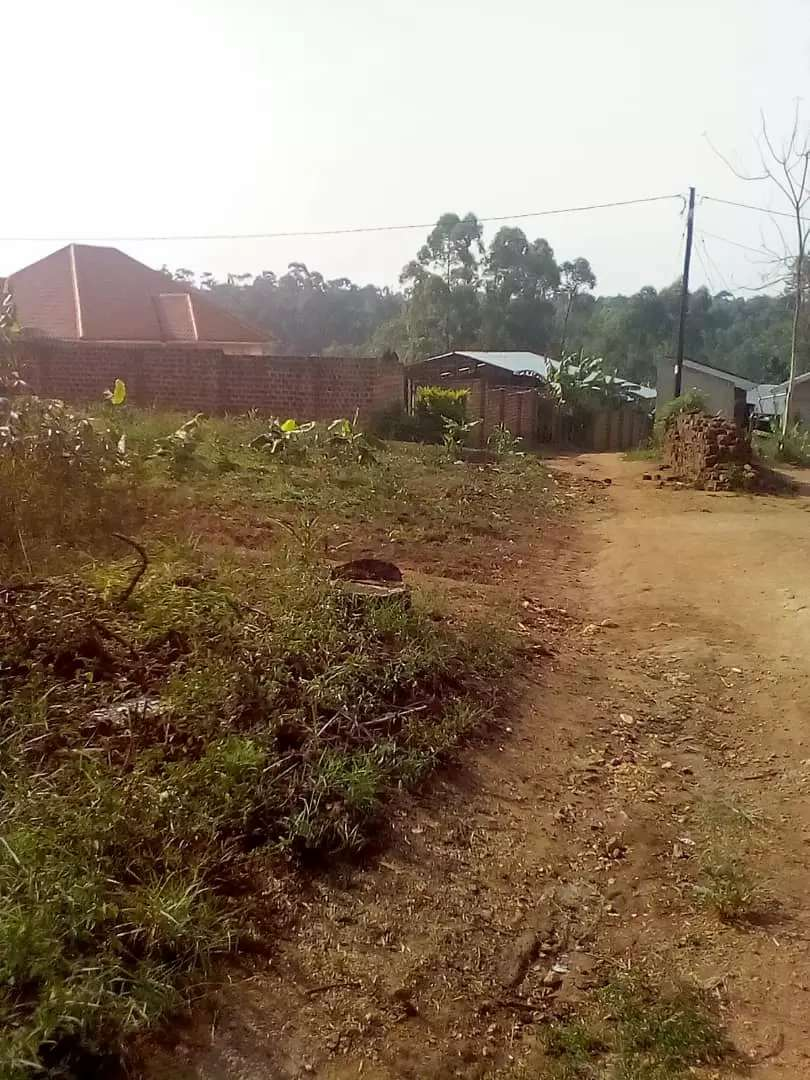 50 x 120 Plot for sale on Gayaza Rd. 0