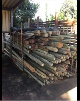 Used gum poles timber