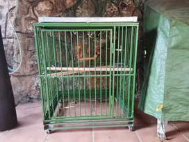 Fold up parrot cage