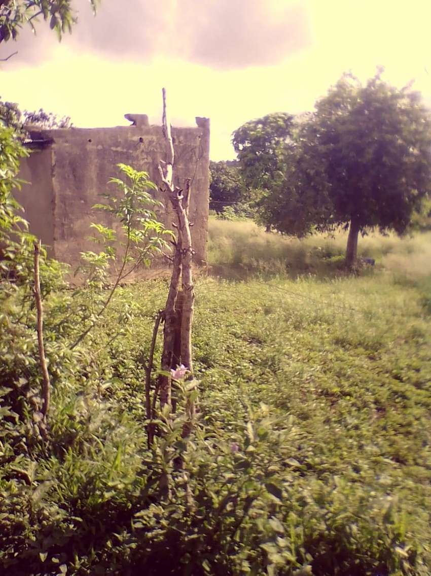 Stand for sale R12000 at Mkhuhlu, Sumerset 0