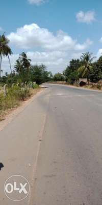 A Clean Square 1/2 An Acre Plot In Kikambala 300 Meters From Tarmac. 0