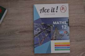 Gr 12 Textbook Ace it! Study guide for boths CAPS and IEB