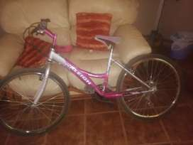 Raleigh girls bicycle